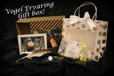 Giftbox uil Topia